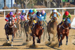 Colourful jockey jerseys whilst horse racing in South Korea